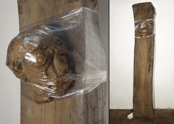 holz-kopf I  2011   200 x 35 x 25 cm  fleisch / holz / folie